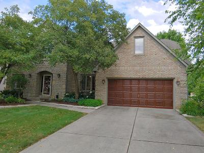 Westerville Single Family Home For Sale: 178 Granby Place W