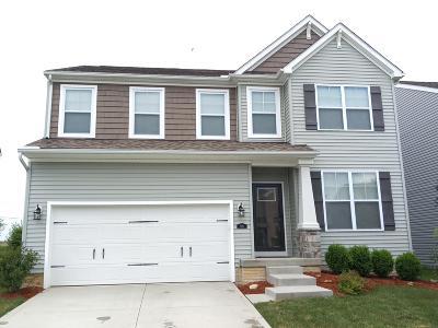 Lithopolis Single Family Home For Sale: 915 Salinger Drive