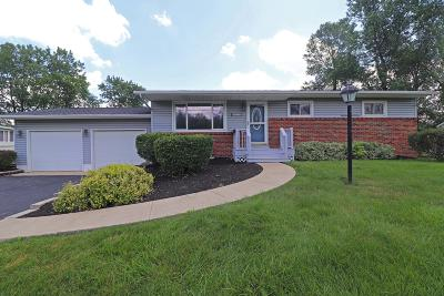 Reynoldsburg Single Family Home For Sale: 6977 Taylor Road SW