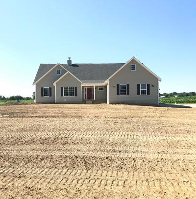Franklin County, Delaware County, Fairfield County, Hocking County, Licking County, Madison County, Morrow County, Perry County, Pickaway County, Union County Single Family Home For Sale: 8962 Johnstown Utica Road