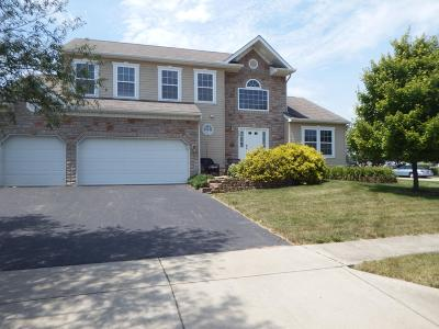 Walker Pointe Single Family Home For Sale: 500 Heidish Drive