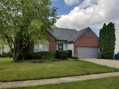 Reynoldsburg Single Family Home For Sale: 7080 Winnow Court