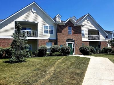 Dublin Condo For Sale: 7746 S Essex Gate Drive