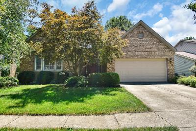 Westerville Single Family Home For Sale: 615 Bridgewater Court