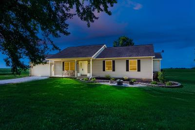 Franklin County, Delaware County, Fairfield County, Hocking County, Licking County, Madison County, Morrow County, Perry County, Pickaway County, Union County Single Family Home For Sale: 3505 Peel Road