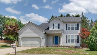 Dublin Single Family Home For Sale: 8672 Copperview Drive