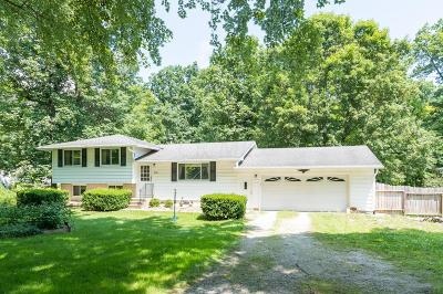 Delaware Single Family Home For Sale: 560 Coover Road