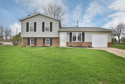 Delaware Single Family Home For Sale: 157 Forest Lake Court