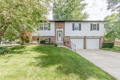 Westerville Single Family Home For Sale: 962 E College Avenue