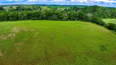 Johnstown Residential Lots & Land For Sale: 8782 Clover Valley Road