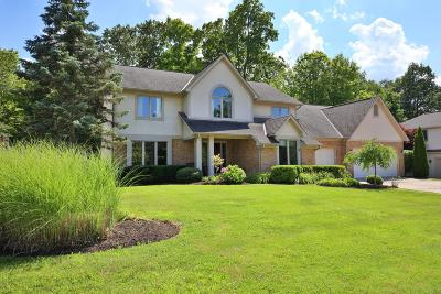 Westerville Single Family Home For Sale: 6371 Lake Trail Drive Drive