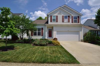 Hilliard Single Family Home For Sale: 3158 Heather Meadow Place