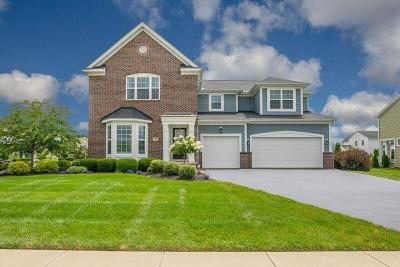 Delaware Single Family Home For Sale: 305 Gelder Drive