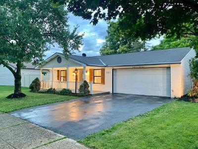 Single Family Home For Sale: 3753 Big Walnut Drive