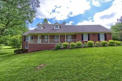 Delaware County, Franklin County, Union County Single Family Home For Sale: 4771 Riverside Drive