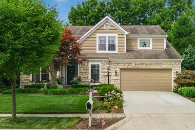Hilliard Single Family Home For Sale: 4591 Mossrock Drive