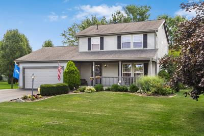 Pickerington Single Family Home For Sale: 9733 Meadow Wood Drive