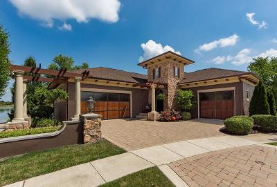 Dublin Single Family Home For Sale: 8866 Ventura Way