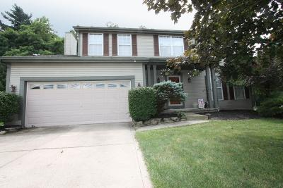 Reynoldsburg Single Family Home For Sale: 843 Bernese Court