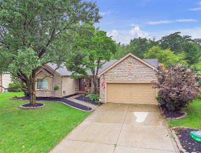 Powell Single Family Home For Sale: 327 Meadow View Drive