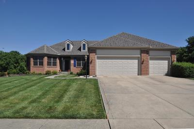 Pickerington Single Family Home For Sale: 13393 Silverbrook Drive