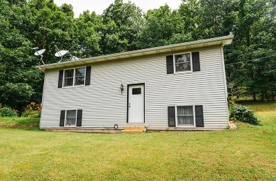 Fairfield County, Pickaway County, Ross County Single Family Home For Sale: 1311 Back Hollow Road