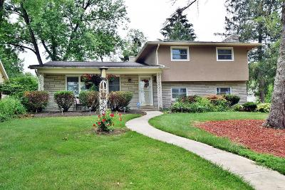 Columbus Single Family Home For Sale: 5081 Maplewood Drive
