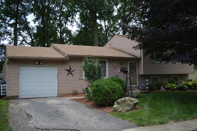 Westerville Single Family Home For Sale: 5642 Montevideo Road
