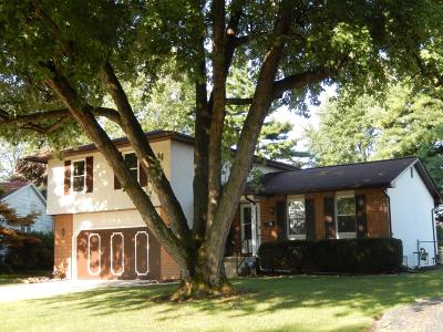 Columbus Single Family Home For Sale: 5579 Rocky Pine Loop W