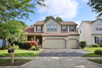 Blacklick Single Family Home For Sale: 529 Streamwater Drive