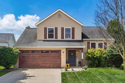 Pickerington Single Family Home For Sale: 3161 Alderbrook Drive