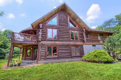 Delaware County, Franklin County, Union County Single Family Home For Sale: 3565 Olentangy River Road
