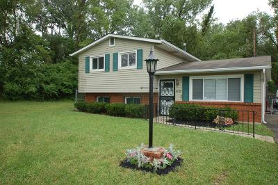 Columbus Single Family Home For Sale: 1678 Deporres Drive