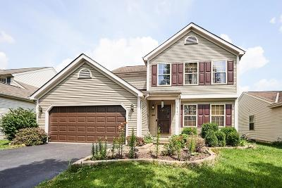 Columbus Single Family Home For Sale: 9184 Prestwick Green Drive