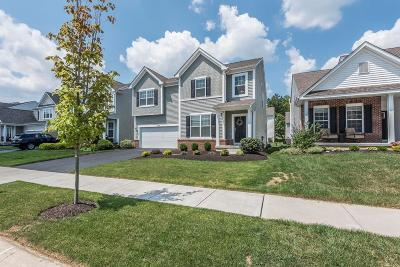 Westerville Single Family Home For Sale: 6169 Dajana Drive