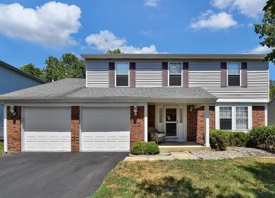 Columbus Single Family Home For Sale: 2252 Green Island Drive
