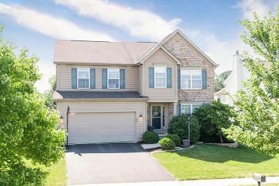 Powell Single Family Home For Sale: 7857 Tree Lake Boulevard