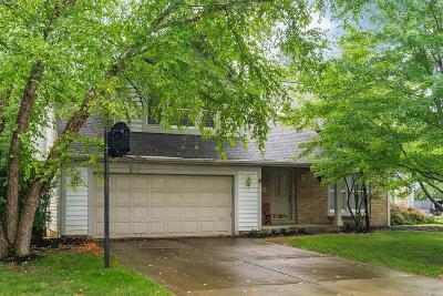 Powell Single Family Home For Sale: 459 Meadow View Drive
