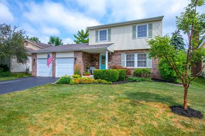 Columbus Single Family Home For Sale: 3648 Cannongate Drive