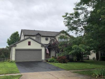 Lancaster Single Family Home For Sale: 1730 Fern Trail Drive