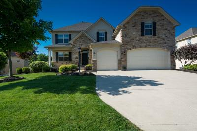 Single Family Home For Sale: 2750 Alum Crossing Drive