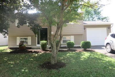 Columbus Single Family Home For Sale: 4107 Owsley Street