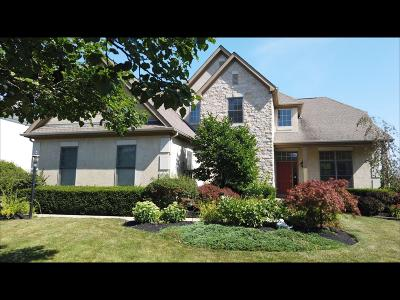 Dublin Single Family Home For Sale: 7132 Brodie Boulevard