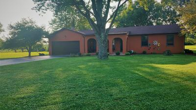 Blacklick Single Family Home For Sale: 1929 Belangee Drive
