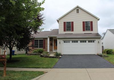 Newark Single Family Home For Sale: 405 Hankinson Lane NE