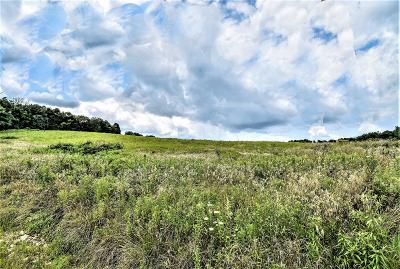 Granville Residential Lots & Land For Sale: 4634 Philipps Road