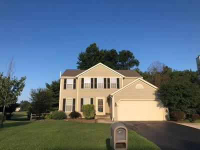 Lewis Center Single Family Home For Sale: 8251 Coldharbor Boulevard