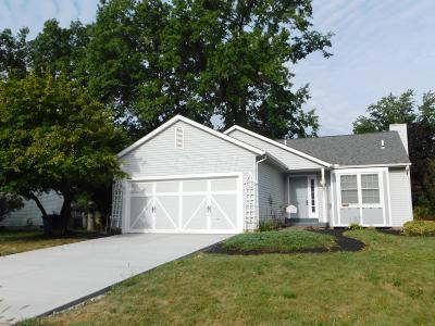 Reynoldsburg Single Family Home For Sale: 1555 Burkey Court