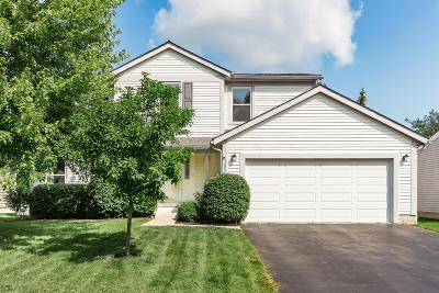 Franklin County, Delaware County, Fairfield County, Hocking County, Licking County, Madison County, Morrow County, Perry County, Pickaway County, Union County Single Family Home For Sale: 5200 Frisco Drive