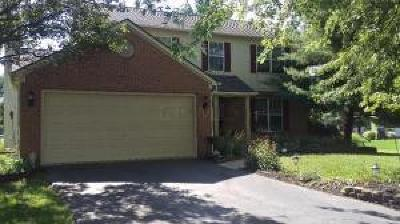 Powell Single Family Home For Sale: 95 Gainsway Court
